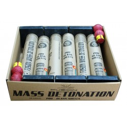 2015 FUSION MASS DETONATION